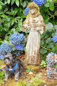 Fiona and St. Francis